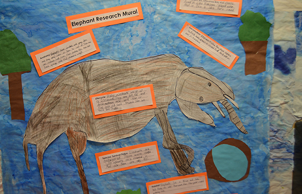 Elephant research mural_WEB