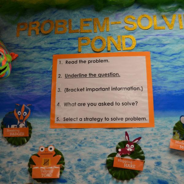 Problem-Solving Pond2