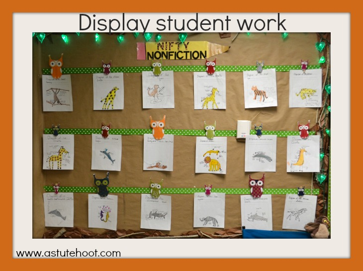 Display Student Work
