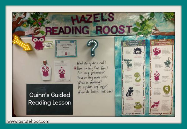 Quinn's Reading Roost