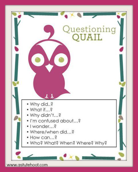 Quinn Anchor Chart 1
