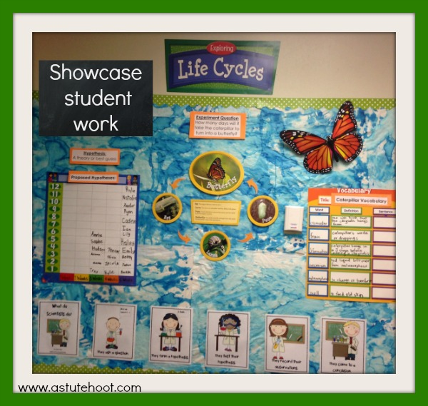 Showcase student work