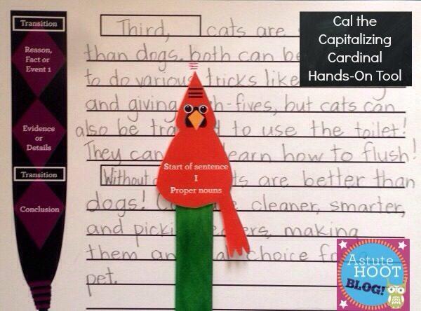 Cal the capitalizing cardinal with blog